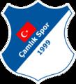 Çamlık Spor.png