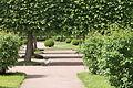 Верхний сад (Петергоф)10.JPG