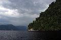 Вид на берег Телецкого озера.JPG