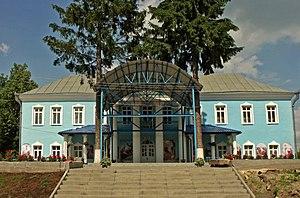 Teodor Shteingel - Shteingel's palace, Horodok