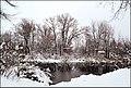 Зима в парку 1.jpg