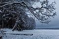 Зимнее Валдайское озеро 1.jpg