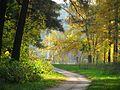 Золотой парк - panoramio.jpg