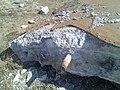 Обломок армированного стальным листом бетона - panoramio.jpg