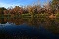Осень, озеро Попово - panoramio.jpg