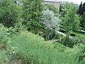 Парк шума Гази Баба во мај (87).JPG
