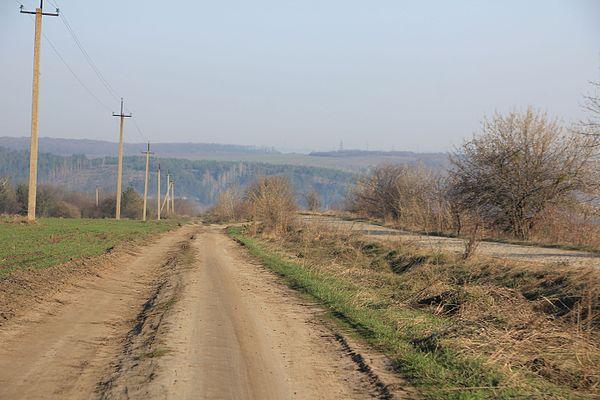 Польова дорога Влащинці