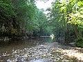 Посебни (геолошки) резерват природе Говјештица, Бања Стијена и Кањон Праче 12.jpg