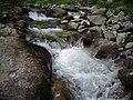 Река Демяница - panoramio.jpg
