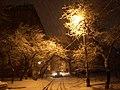 Снег в марте - panoramio.jpg