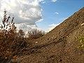У подножья заброшенного террикона - panoramio.jpg