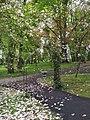 Чернівецький дендропарк3.jpg