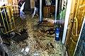 حمله تروریستی مجلس شورای اسلامی-۴۵.jpg