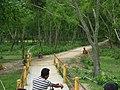 আমার সাথে দেখুন সিংড়া জাতীয় উদ্যান 2.jpg