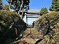 台場公園 - panoramio (9).jpg
