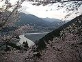 富士川遠景(うつぶな公園) - panoramio (3).jpg