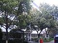 无锡锡南公寓 - panoramio - 柳鲲鹏.jpg