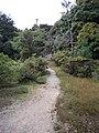 楽山公園 - panoramio (1).jpg