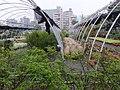 水源地苗圃 Nursery in Water Source Site - panoramio.jpg