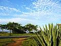 美丽的景色 - panoramio.jpg