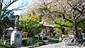 長谷寺 - panoramio (6).jpg