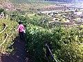 장성 평림댐 ^32 - panoramio.jpg