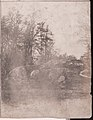 -Collection of British Calotypes and Wood-engravings- MET DP70833.jpg