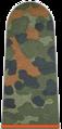 001-Schütze Feldjägertruppe.png