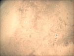 09-349.58.58 VMC Img No 29 (8269432572).png