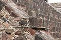15-07-20-Teotihuacan-by-RalfR-N3S 9434.jpg