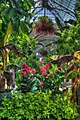 15-23-0214, Botanic Garden - panoramio.jpg