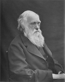 1878 Darwin photo by Leonard from Woodall 1884 - cropped grayed partially cleaned.jpg