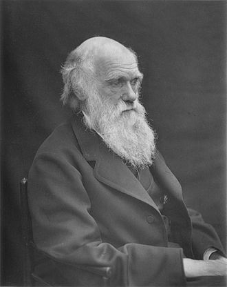 By 1878, an increasingly famous Darwin had suffered years of illness. 1878 Darwin photo by Leonard from Woodall 1884 - cropped grayed partially cleaned.jpg