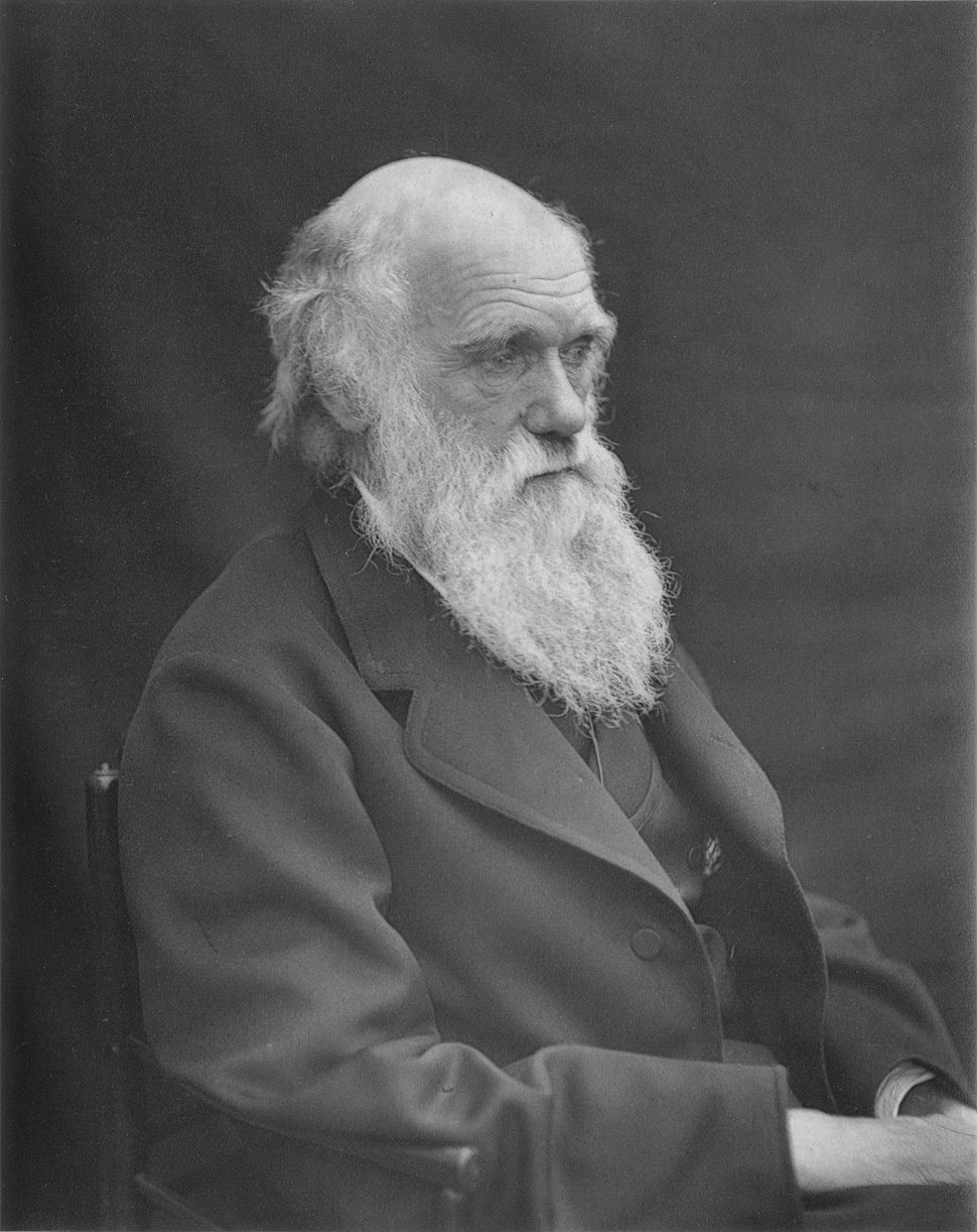 1878 Darwin photo by Leonard from Woodall 1884 - cropped grayed partially cleaned