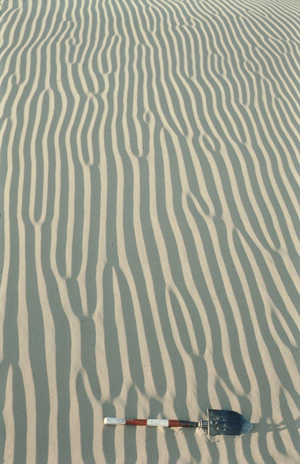 1969 Afghanistan (Sistan) wind ripples.tiff