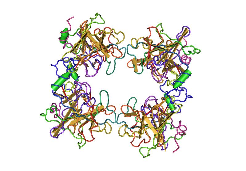 File:1A0L Human Beta-Tryptase05.png