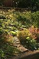 2007 community garden Boston 2028615256.jpg