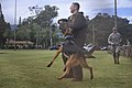 2010 Hawaiian Islands Working Dog Competition DVIDS342905.jpg