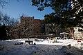 2010 community garden BrooklynNY 4349662195.jpg