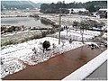 2012年第一场雪 - panoramio (2).jpg