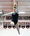 2015 District Championships West Geauga 19.jpg