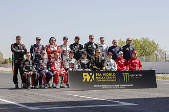 2015 FIA World Rallycross Championship - The permanent entries for the 2015 season, with Edward Sandström filling in for Mattias Ekström