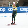 2019-01-12 Men's Qualification at the at FIS Cross-Country World Cup Dresden by Sandro Halank–491.jpg
