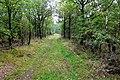 2019-10-05 Hike Forst Leucht. Reader-05.jpg