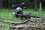 2684750 A German Bundeswehr soldier of 4th Paratrooper Company, 31st Paratrooper Regiment, during training exercise at the Hohenfels Training Area 2016.jpg