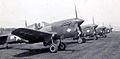 316th Fighter Squadron - P-40 Warhawk.jpg