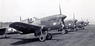 316th Fighter Squadron - P-40 Warhawks of the 316th Fighter Squadron in North Africa, 1943