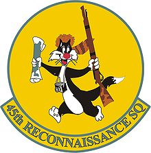 45 Recon Squadron Patch.jpg
