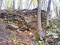 565 01 Choceň, Czech Republic - panoramio (23).jpg