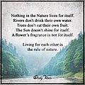 57481dc90084e2f70b3d93fbe142b2d4--nature-inspired-hippie-life.jpg
